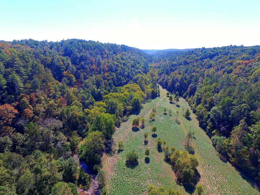Jasper land for sale, trout fishing,pickens county, country, estate, retreat